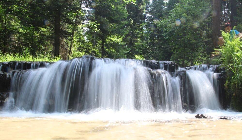 Rezerwat Nad Tanwia (3)